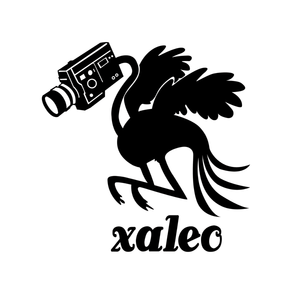 realisateur_xaleo_leo_meslet